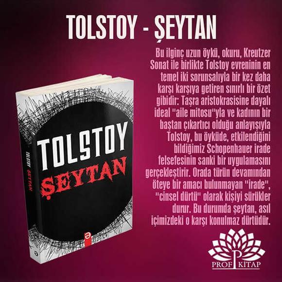 Lev Tolstoy Seti 6 Kitap